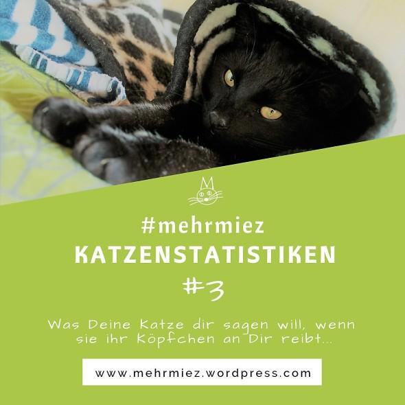 Katzen statistik